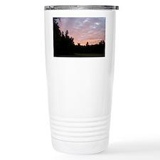 100_2986 Travel Mug