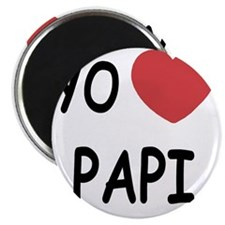 PAPI Magnet