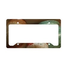 ACCEPTANCE_COURAGE_WISDOM License Plate Holder