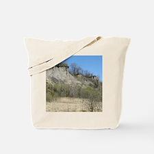 100491n1 Tote Bag