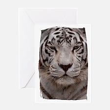 (16) White Tiger 4 Greeting Card