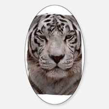 (16) White Tiger 4 Decal