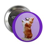 Begging Corgi Button