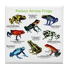 Poison Dart Frogs of the Amazon Tile Coaster