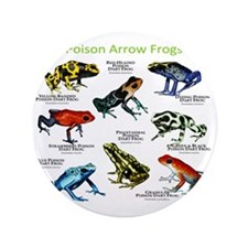 "Poison Dart Frogs of the Amazon 3.5"" Button"