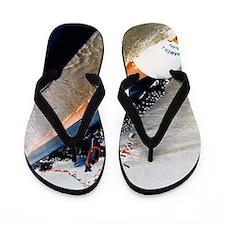 kamehameha ssbn large framed print Flip Flops