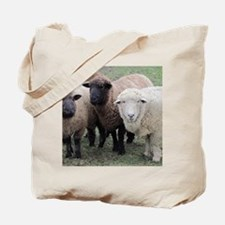 3 Sheep at Wachusett Tote Bag