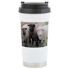 3 Sheep at Wachusett Travel Coffee Mug