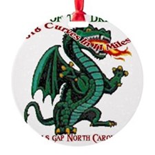 Flaming Dragon Tail of the Dragon D Ornament