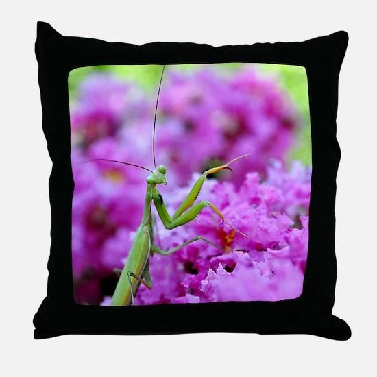 Puzzle Preying Mantis Throw Pillow