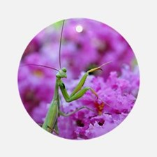 Puzzle Preying Mantis Round Ornament