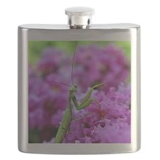 Keepsake Box Preying Mantis Flask