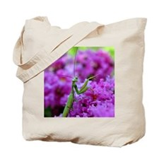 Keepsake Box Preying Mantis Tote Bag