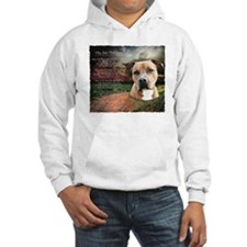 godmadedogs2 Hoodie