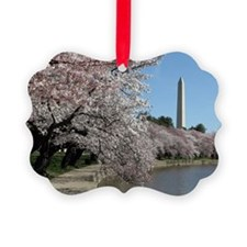 Peal bloom cherry blossom frames  Ornament