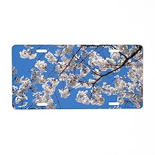 Cherry Blossom Peak Bloom W Aluminum License Plate