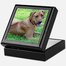 Dogforcafe Keepsake Box