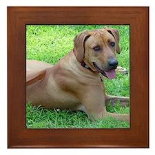 Dogforcafe Framed Tile