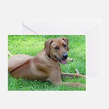 Dogforcafe Greeting Card