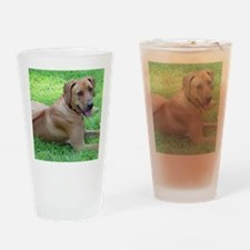 Dogforcafe Drinking Glass