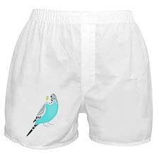 Sweet Bird Parakeet Boxer Shorts