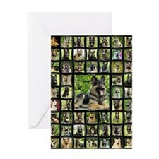 blanket-brutus Greeting Card