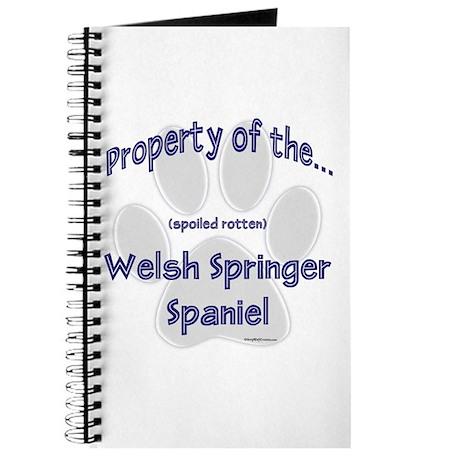 Welsh Springer Property Journal