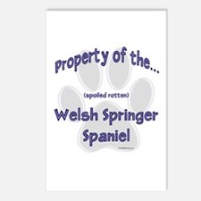 Welsh Springer Property Postcards (Package of 8)