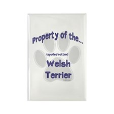 Welsh Terrier Property Rectangle Magnet