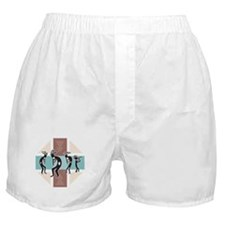 Kokopelli Designs Boxer Shorts