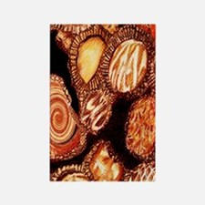 chocolates_itouch4case Rectangle Magnet