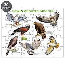 Hawks of North America Puzzle