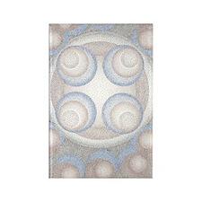 ObaBorder5inch Rectangle Magnet