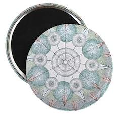OxossiBorder5inch1 Magnet