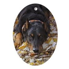 bayden09crouch Oval Ornament