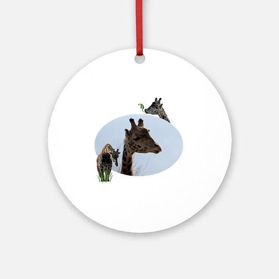three giraffes Round Ornament