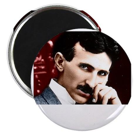 Tesla_white Magnet