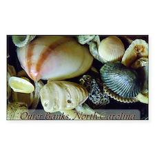 shells01 Decal
