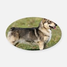 Swedish Vallhund 9Y767D-057 Oval Car Magnet
