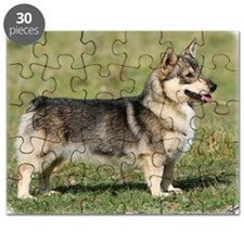 Swedish Vallhund 9Y767D-057 Puzzle