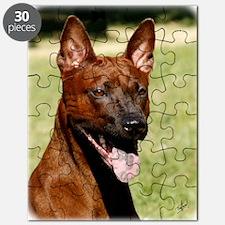 Thai Ridgeback 9Y815D-019 Puzzle