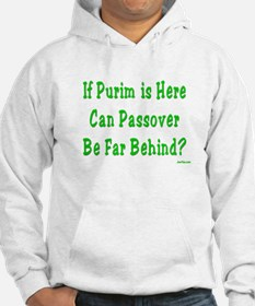 After Purim Comes Passover Hoodie