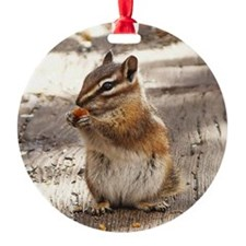 Chipmunk Ornament