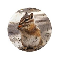 "Chipmunk 3.5"" Button"