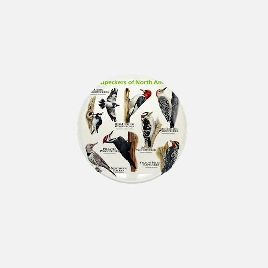 Woodpeckers of North America Mini Button
