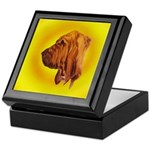Beautiful Bloodhound Head stu Keepsake Box