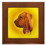 Beautiful Bloodhound Head stu Framed Tile