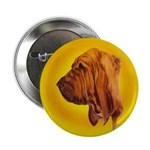 Beautiful Bloodhound Head stu Button