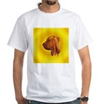 Beautiful Bloodhound Head stu White T-Shirt