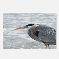 birds 071 Postcards (Package of 8)